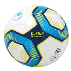 Ballon de football réplique du championnat français.