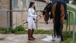 cavalière qui  lave son cheval