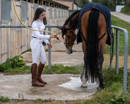 amazone die haar paard wast