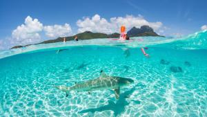 zonnebescherming-bij-het-snorkelen