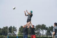 conseils-le-rugby-fédéral-les-divisions-du-rugby-en-France