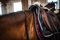 """Selle polyvalente en cuir, arçon réglable équitation cheval PADDOCK marron 17,5"""""""