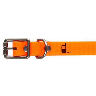 Collier chien 500 Orange fluo