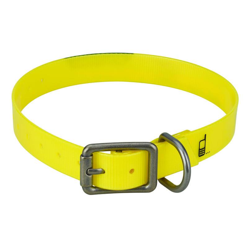500 Dog Collar - Fluo yellow