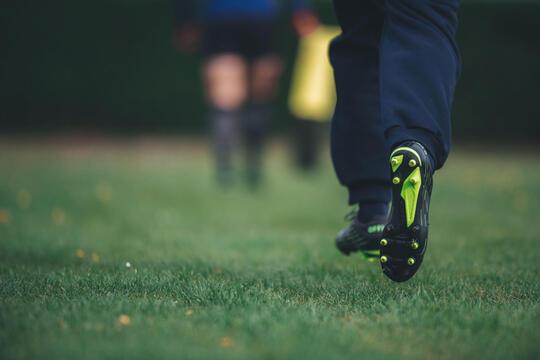 conseils-les-dimensions-et-lignes-dun-terrain-de-rugby