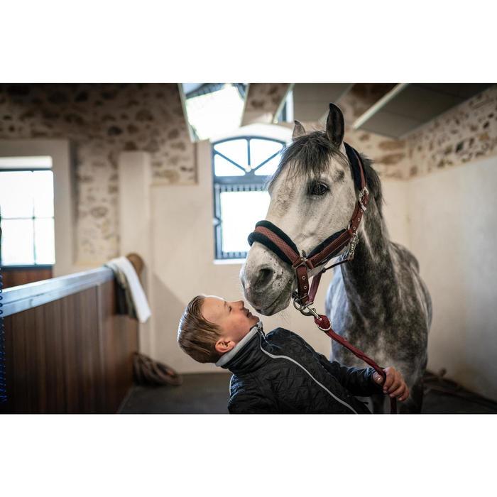 Licol équitation cheval et poney WINNER bordeaux