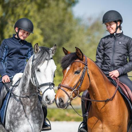 bien-etre-cheval-travail-equitation-fouganza-decathlon-3