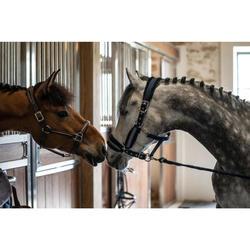 Halfter Winner Pony/Pferd marineblau
