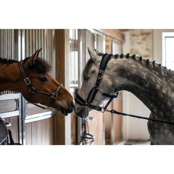 Halster Winner voor pony's en paarden ruitersport marineblauw