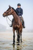 Polo chaud d'équitation à manches longues 500 WARM femme marine