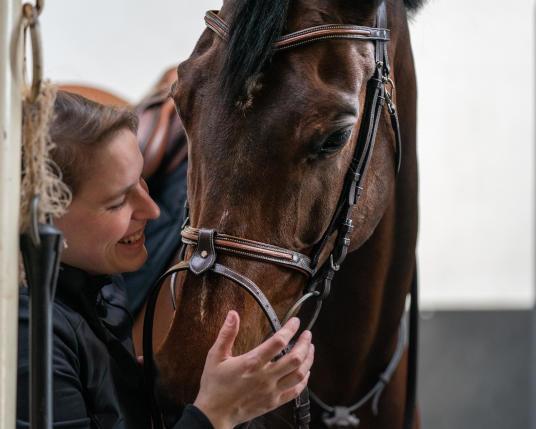 Alt/Equipement du cheval | Fouganza