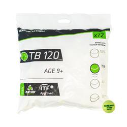 網球TB120(72入)-綠點款