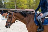 500 Women's Horseback Riding Jodhpurs with Grippy Patches - Grey