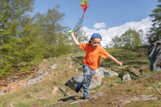 8 activités pour occuper son enfant en randonné