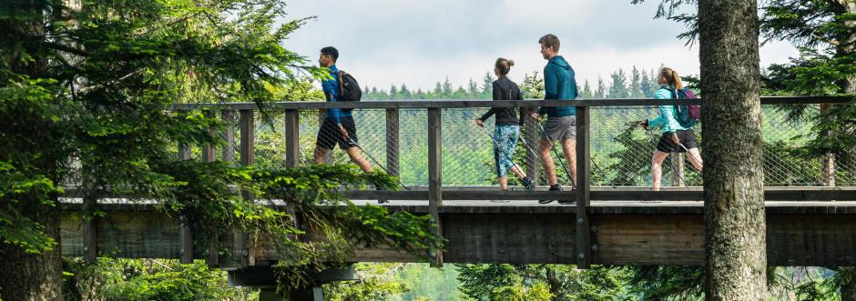 marche-nordique-forêt