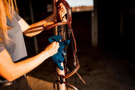 Alt/entretien du cuir