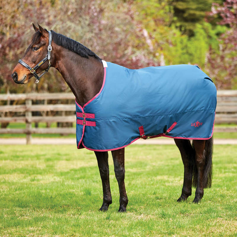 COLD WEATHER TURNOUT RUGS Horse Riding - SAXON 600D STANDARD MEDIUM WEATHERBEETA - Saddlery and Tack