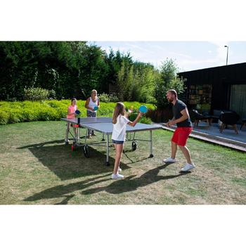 PPT 530 Outdoor Table Tennis Table - 10 years guarantee