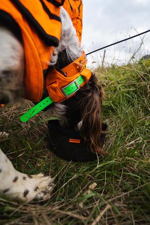 Миска гибкая для собаки