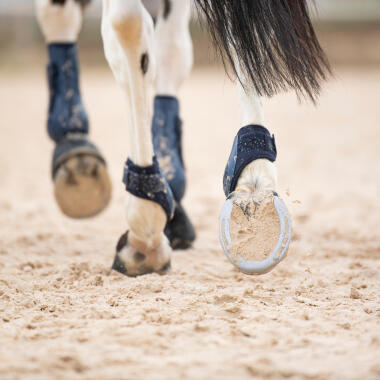 Wie pflege ich die Pferdehufe