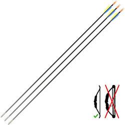 碳纖維箭弓箭(3入)Discovery 300