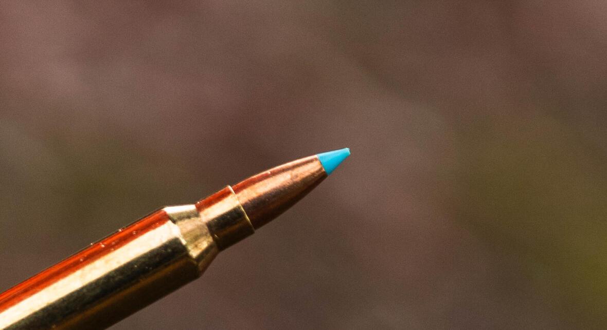 Le sans plomb : le futur de nos balles de chasse