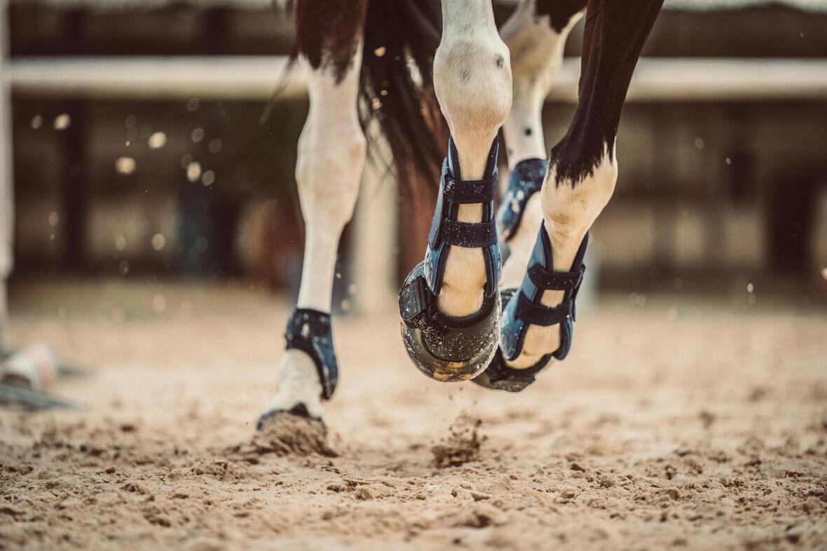 Proteger_mon_cheval_barres_au_sol