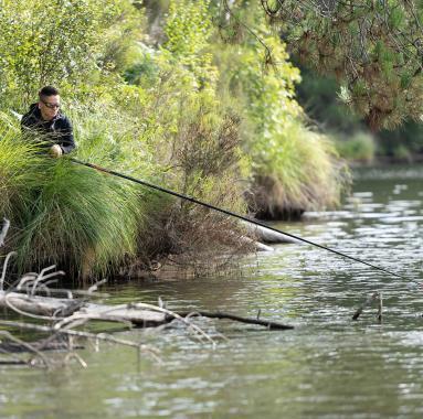 pêche au coup en automne
