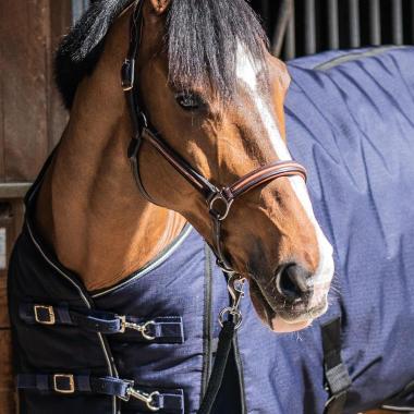 cc couverture cheval