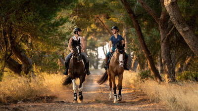 cheval_equitation.jpg