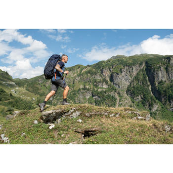 快調式登山健行杖MH500-藍色