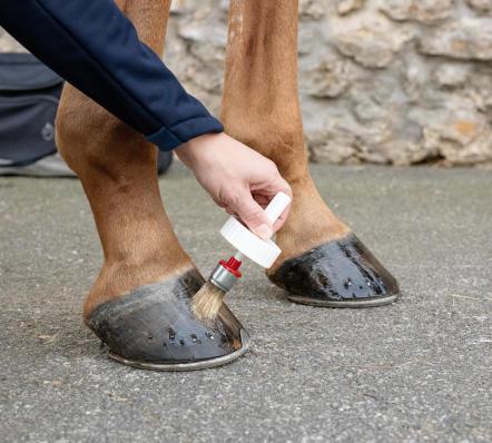 nl_afbeelding_ruitersport_desk_verzorgingsproducten_voor_paardenhoeven_outdoor_fouganza.jpg
