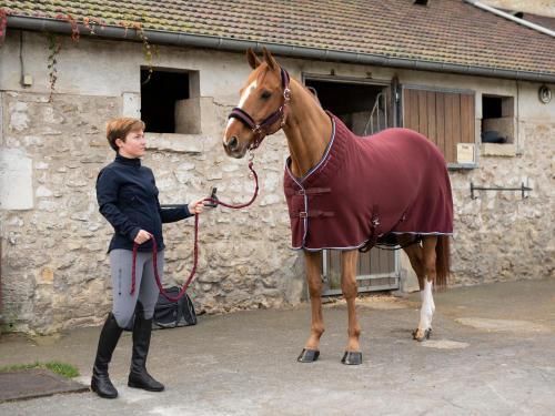 Come prendersi cura dei piedi del cavallo