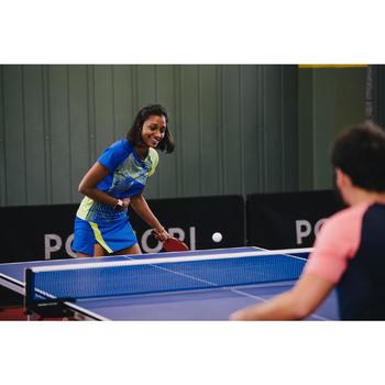 Table Tennis Table TTT100