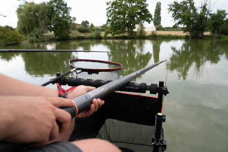 How to choose the best carp bait?