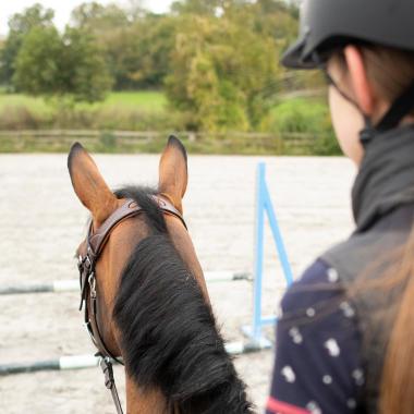 cc une protection dorsale équitation