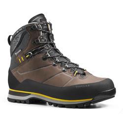 Botas Impermeables de Montaña y Trekking, Forclaz, Trek900, Hombre, Marrón