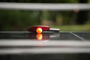 L'origine de la table de ping pong grâce au billard decathlon