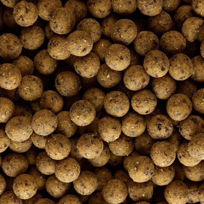 Bouillettes pêche de la carpe NATURALSEED 16mm 10kg Scopex