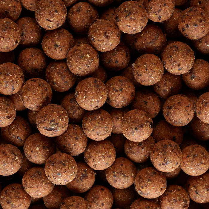 Bouillettes pêche de la carpe NATURALSEED 20mm 10kg Ail/Foie