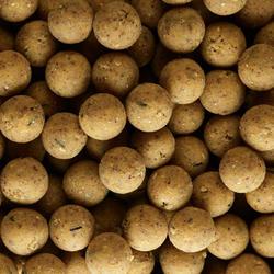 Bouillettes pêche de la carpe XTREM 900 14mm 1kg Scopex