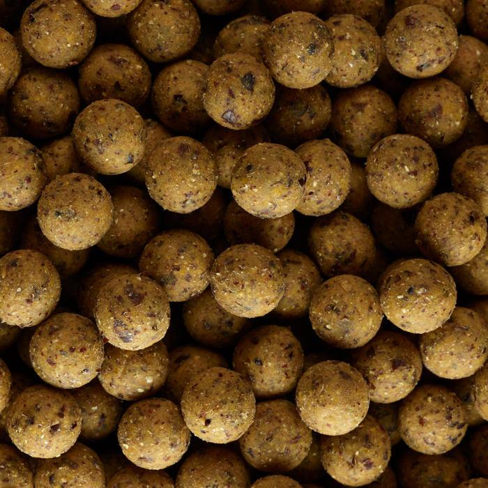 Boilies voor karpervissen NaturalSEED 20 mm 10 kg Scopex