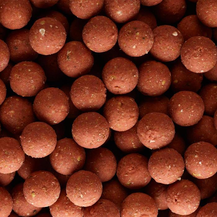 Bouillettes pêche de la carpe XTREM 900 14mm 1kg Fraise