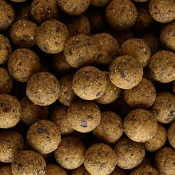 Bouillettes pêche de la carpe NATURALSEED 24mm 10kg Scopex