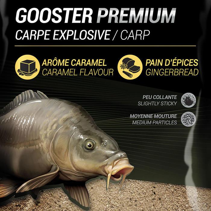 AMORCE GOOSTER PREMIUM CARPE EXPLOSIVE 1kg