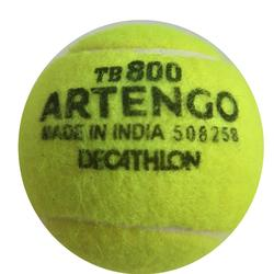 Tennis ball beginner - TB800 Yellow