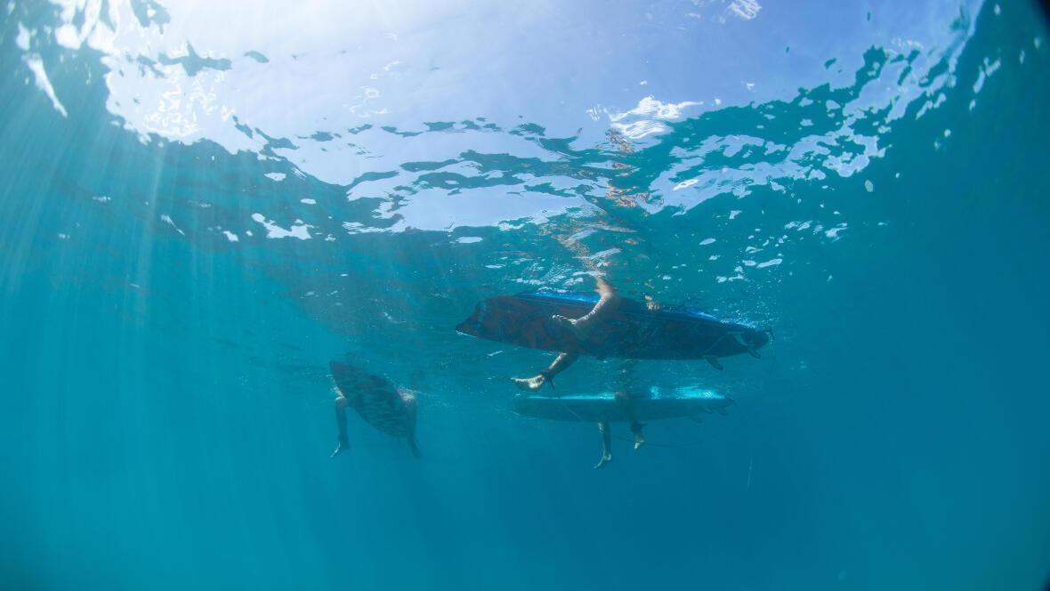 Oostende surfspot Mariakerke Ollie's Point
