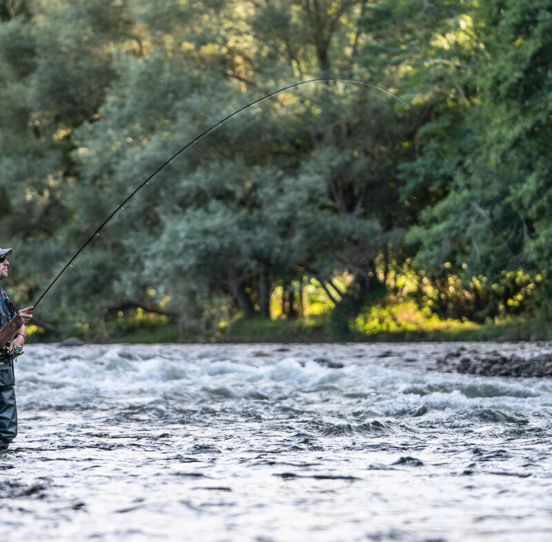 riviere truite