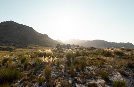 voyages sans sortir de chez vous avec quechua