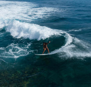 Tudo sobre o surf